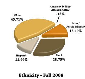 Fall 2006 Ethnicity