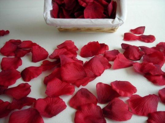 Romantic Sayings With Rose Petals
